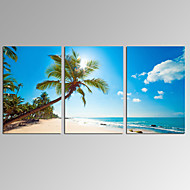 VISUAL STAR®3 Panel Seascape Canvas Print Beach Landscape Wall Art Ready to Hang
