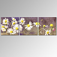 VISUAL STAR®3 Panel Daisy Flower Canvas Prints for Home Decor Stretched Wall Art Ready to Hang
