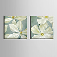 Mini Size E-HOME Oil painting Modern  Flowers  Pure Hand Draw Frameless Decorative Painting