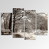VISUAL STAR®Winter Forest Landscape Picture Print on Canvas for Home Decoration Ready to Hang