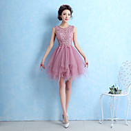 Cocktail Party Dress A-line Jewel Short / Mini Lace / Tulle with Lace