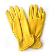 鹿革手袋を保護します