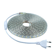 6W Bandes Lumineuses LED Flexibles 20 lm AC 100-240 V 5 m 300 diodes électroluminescentes Blanc chaud Blanc Rouge Bleu Vert