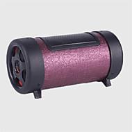 autojen suppliesround puinen stereot 12v / 220v