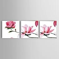 Pintados à mão Abstracto / Paisagem / Vida Imóvel / Floral/Botânico Pinturas a óleo,Modern / Clássico / Pastoril / Estilo Europeu3