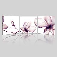 canvas Set / Impressão em tela sem moldura Paisagem / Floral/Botânico Moderno,3 Painéis Tela Quadrangular Impressão artística wall Decor