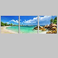 Canvas Set Maisema Leisure Moderni,3 paneeli Pystysuora Tulosta Art Wall Decor For Kodinsisustus