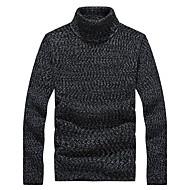 Herren Standard Pullover-Lässig/Alltäglich Arbeit Formal Sport Übergröße Solide Langarm Polyester Frühling Herbst Winter