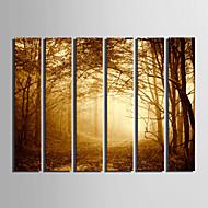 canvas Set Paisagem Estilo Europeu,Mais que 5 painéis Tela Vertical Impressão artística wall Decor For Decoração para casa