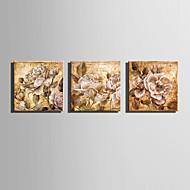 canvas Set Floral/Botânico Estilo Europeu,3 Painéis Tela Quadrangular Impressão artística wall Decor For Decoração para casa