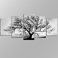 VISUAL STAR®Black and White Tree Picture Giclee Artwork 5 Panels Modern Home Wall Decoration Framed Canvas Print Ready to Hang
