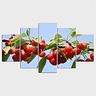 Afdrukken Op Opgespannen Doek Voedsel Bloemenmotief/Botanisch Modern Klassiek,Vijf panelen Canvas Elke vorm Print Art Muurdecoratie For