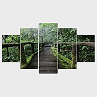 Estampados de Lonas Esticada Floral/Botânico Pastoril,5 Painéis Tela Qualquer Forma Impressão artística Decoração de Parede For Decoração
