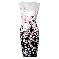 Women's Going out Casual/Daily Vintage Street chic Color Block Slim Sheath DressFloral Round Neck Above Knee Sleeveless FallMid