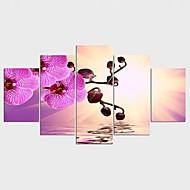 Aufgespannte Leinwandrucke Blumenmuster/Botanisch Modern Stil,Fünf Panele Leinwand Jede Form Druck-Kunst Wand Dekoration For Haus