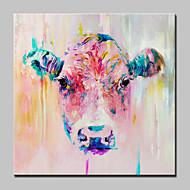 מצויר ביד בעלי חיים מרובע,סגנון ארופאי מודרני פנל אחד בד ציור שמן צבוע-Hang For קישוט הבית