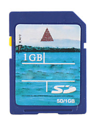 Carte mémoire SD 1 Go