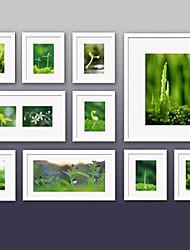 Contemporary Gallery White Collage Wall Picture Frames, Set of 10