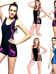 swimsuit das mulheres positivas do tamanho