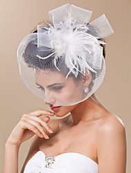 Gorgeous Tulle With Feather Bridal Veil/ Headpiece