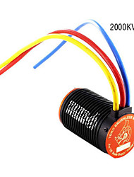 SKYRC Toro R8 2000KV Brushless Motor For Buggy