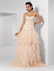 Prom / Formal Evening / Quinceanera / Sweet 16 Dress - Champagne Plus Sizes / Petite Ball Gown / Princess / A-line Sweetheart / Strapless