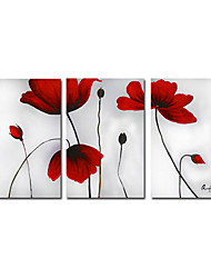 Hand-painted Floral Oil Painting with Stretched Frame - Set of 3