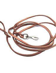 genuína coleira de cão de couro (300cm/118inch, marrom)