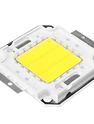DIY 20W 1500-2500LM 6000-6500K Natural White Light Integrated LED Module (33-35V)