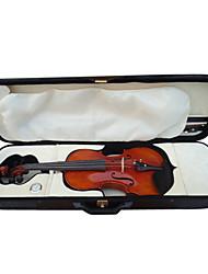 4.4 à haute teneur flamme âge épinette violon d'érable tenue