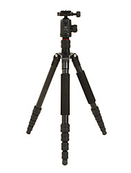 DIDEA Camera Tripod K215 for Digital Camera, SLR&DSLR