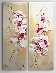 Hand-Painted Floral/Botanical Modern,Two Panels Oil Painting