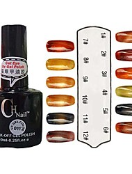 Cor UV Builder Gel Opal Nail Polish No.1-12 terno com Opala Bar Magnet (10ml, 1pcs, cores sortidas)