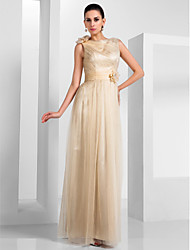 Formal Evening / Military Ball Dress - Champagne Plus Sizes / Petite Sheath/Column Bateau Floor-length Tulle