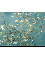 Almond Branches in Bloom, San Remy, ca. 1890 von Vincent Van Gogh Famous Leinwand