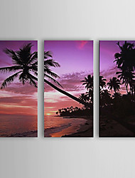 Hand Painted Oil Painting Landscape Tropical and Beach Set of 3 with Stretched Frame 1307-LS0102