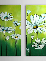 Hand Painted Oil Painting Floral Little Daisy Set of 2 with Stretched Frame 1307-FL0193