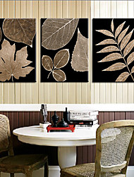 Stretched Canvas Art Botanical Big Leaves Set of 3