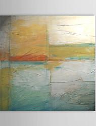 handgeschilderde olieverf abstract met gestrekte frame van 1307-ab0442
