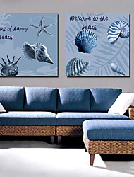 Stretched Canvas Art Landscape Beach and Conch Set of 2