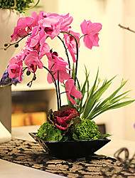 "18 ""H Orchid In Square Vase en céramique"