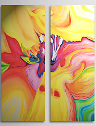 Hand Painted Oil Painting Abstract Secret Life with Stretched Frame Set of 2 1308-AB0729