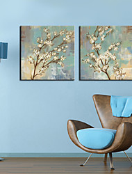 Stretched Canvas Art Floral White Plum Bloom Set of 2