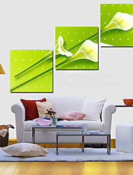 Stretched Canvas Art Botanical Flying Tuplips Set of 3