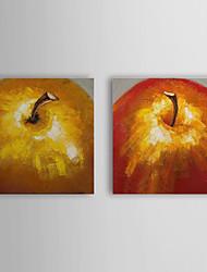 Dipinti a mano pittura a olio Still Life Apple con telaio allungato Set di 2 1309-SL1021
