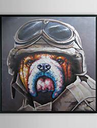 Mr.Pilot животных обрамленная картина маслом