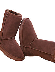Donna della neve Warm Boot Shoes (Coffee)