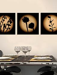 Stretched Canvas Print Art Botanical Flowers Set of 3