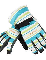 CNHIMALAYA Waterproof Blue+White Striped Ski Gloves