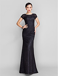 Formal Evening / Military Ball Dress - Plus Size / Petite Trumpet / Mermaid Scoop Sweep / Brush Train Lace with Beading